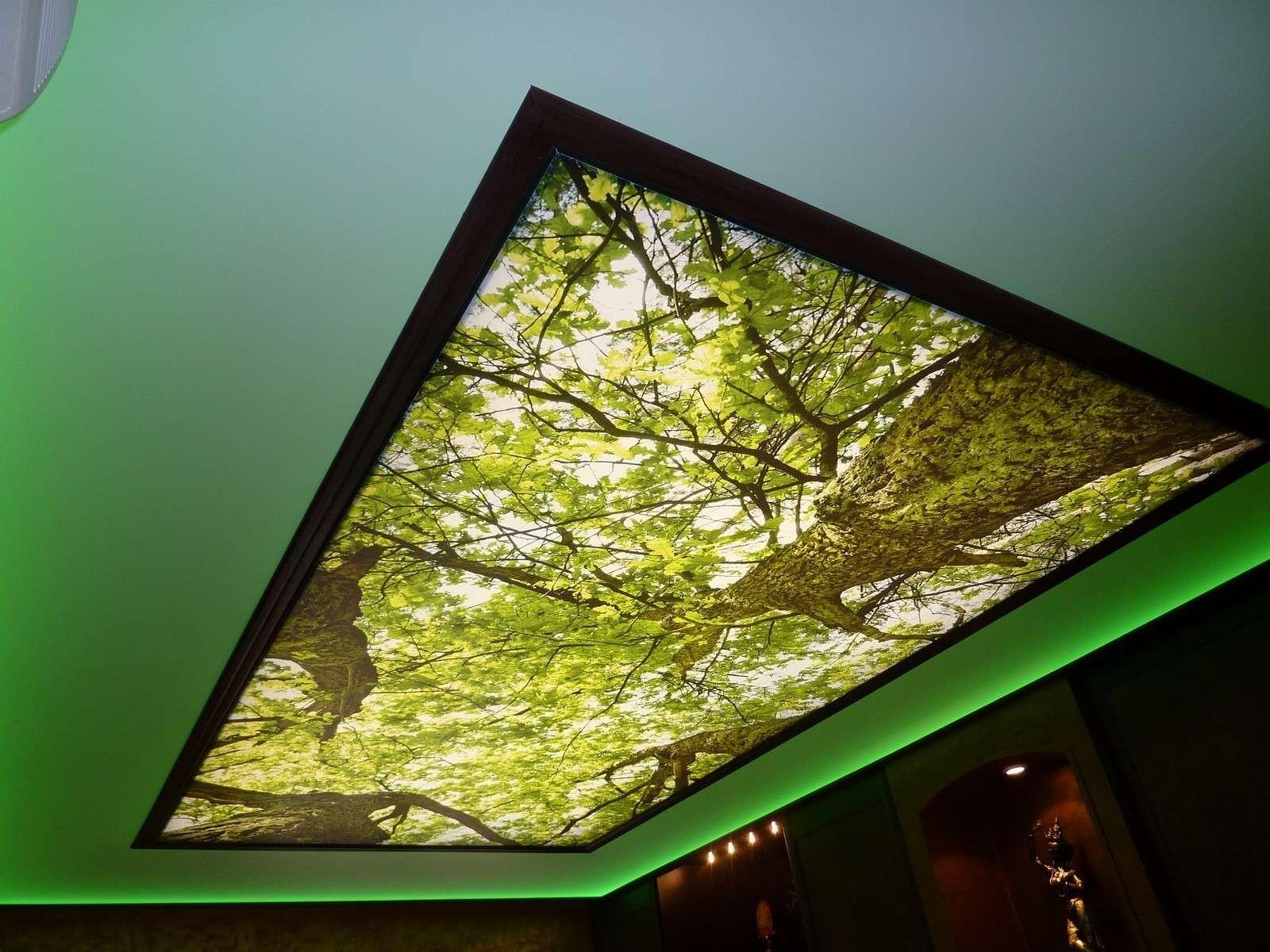 Plafond tendu imprimé lumineux (éclairage principal) et plafond tendu translucide et lumineux